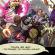 The Cauldron – фенско разширение за Sentinels of the Multiverse