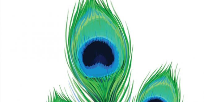 Pikoko – Пожелавай пауна на ближния