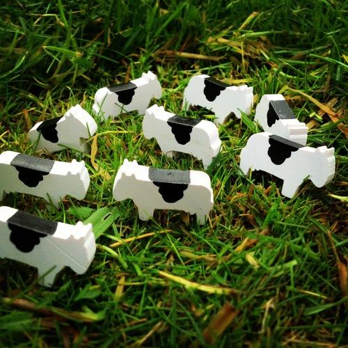 Красивите крави от Homesteaders